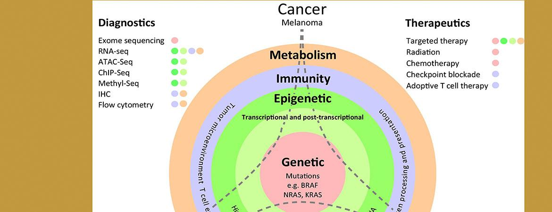 Genomic and Non-Genomic Alterations in Cancer Evolution